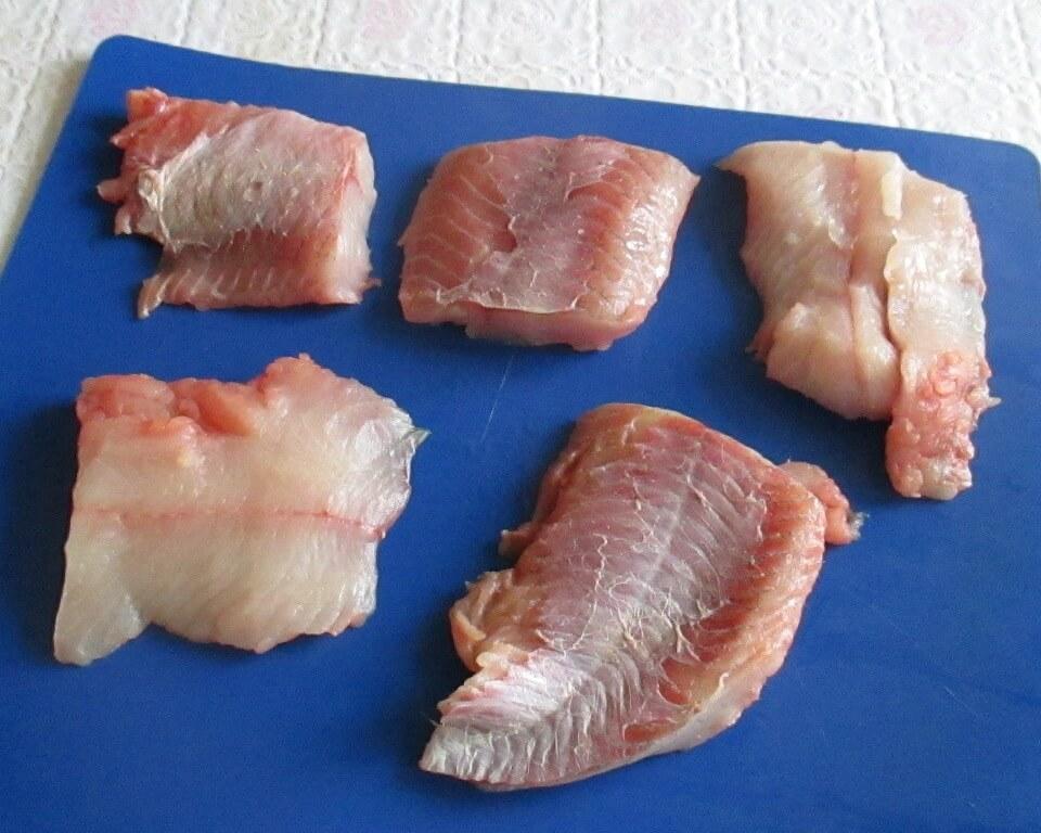 рыба змееголов фото
